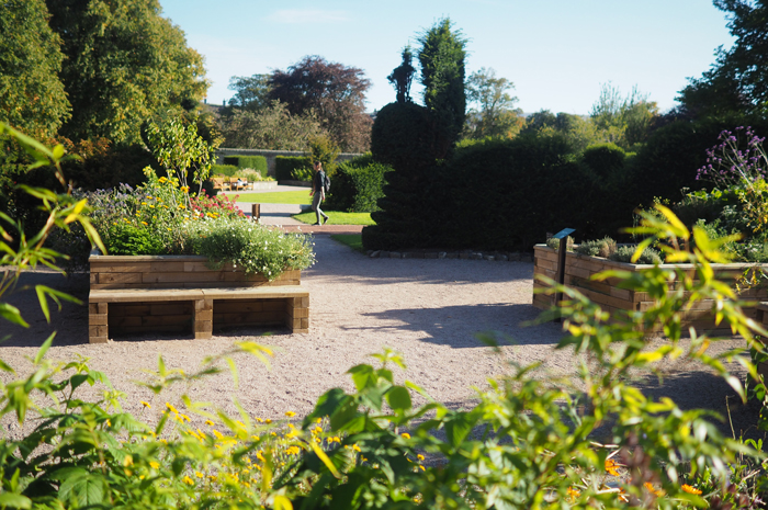 Bench seating within the sensory garden